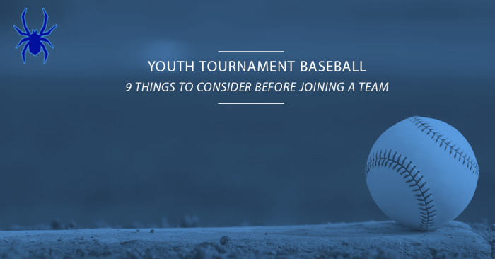Youth Tournament Baseball