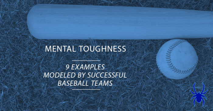 Mental Toughness Baseball
