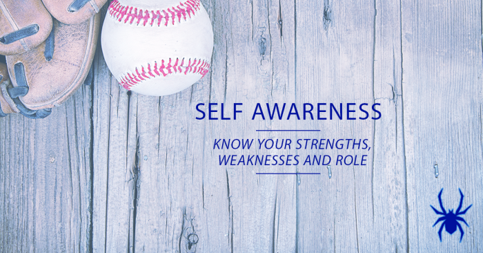 Self Awareness Baseball