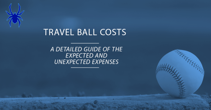 Travel Baseball Costs