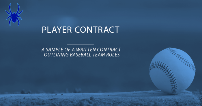 Youth Baseball Player Contract