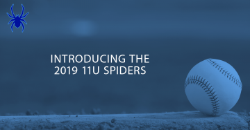 Introducing the 2019 11u Spiders